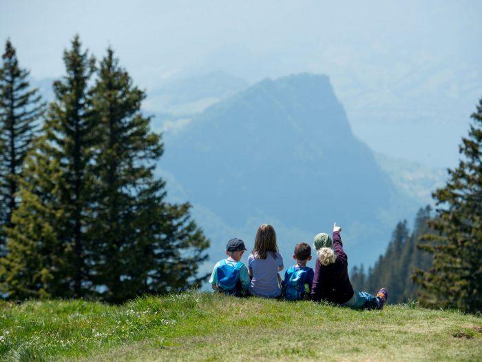 Sommer Familien-Hit auf der Rigi